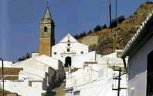 ARDALES CITY, CIUDAD SIN LEY (Francisco Ortiz)